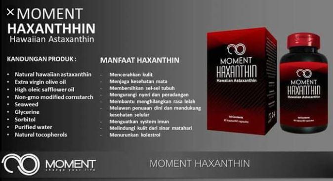 MANFAAT HAXANTINE MOMENT